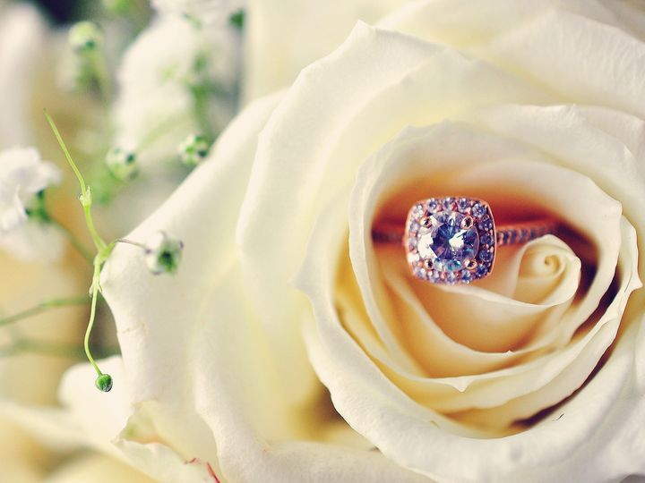Tmx Kingsport Tn Wedding Photography Ring Rose 51 1053049 V1 Bristol, TN wedding photography