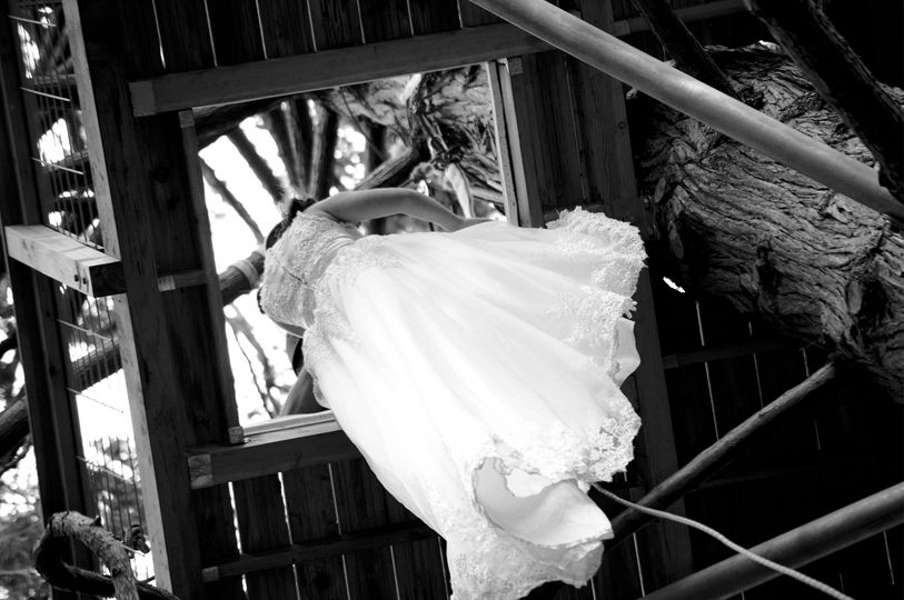 Tree house bride