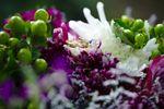 Juilene Photography image