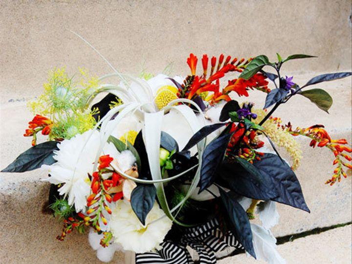 Tmx 1440100600151 Fosters York wedding florist