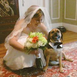 The bride and dog