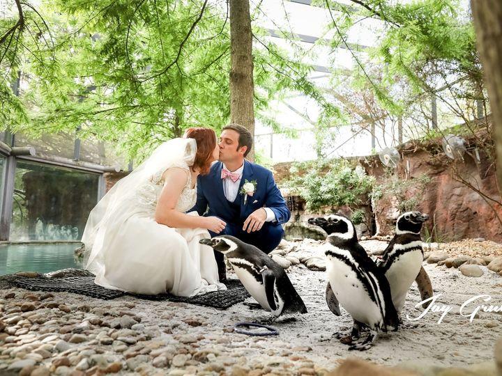 Tmx Lnajaygrubbphotography17882 51 663249 1564149215 Saint Augustine wedding photography