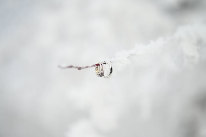 Rings in the snow