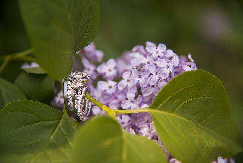 Rings in lilacs