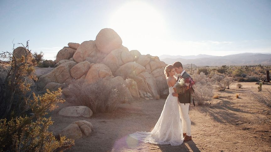 The Quail & The Dove