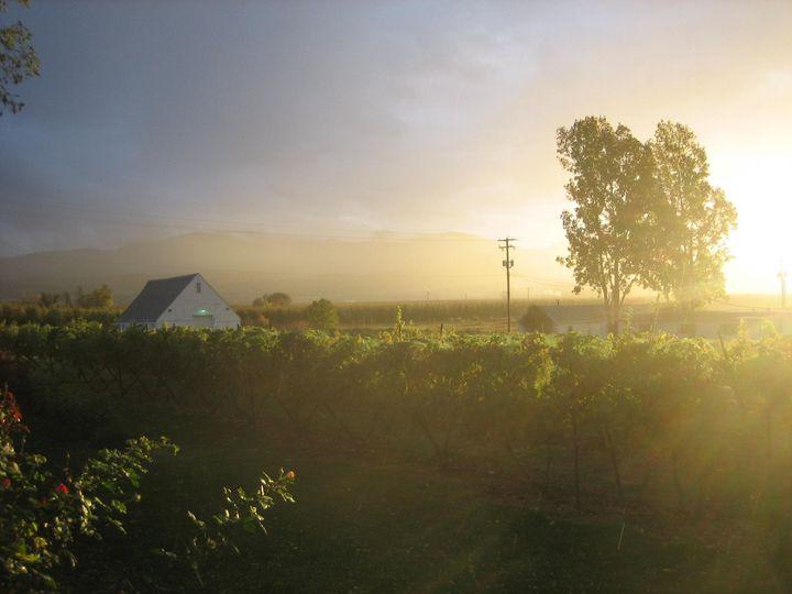 winery fall 024