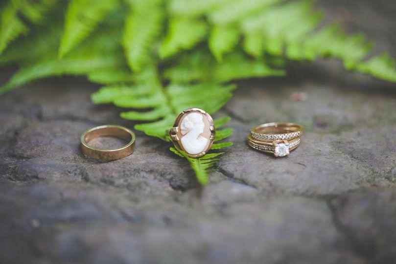 Rings and Ferns