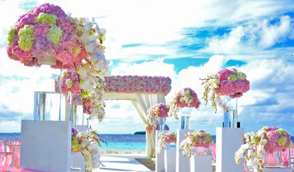 T.C.M. Wedding Coordination 2