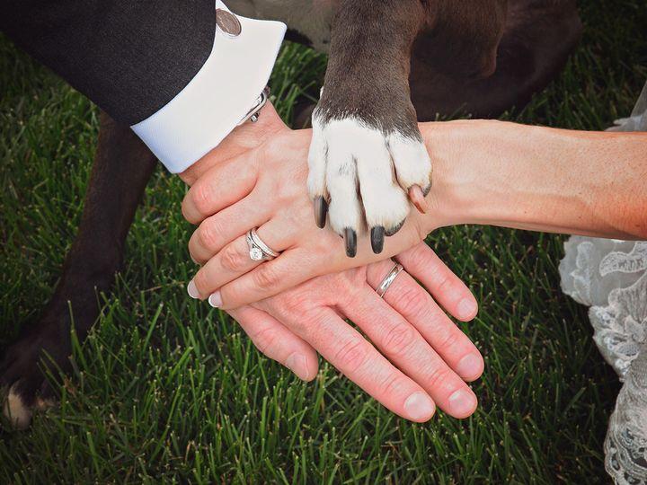 Tmx 1493898440483 Ootoseptsubmission5 Saratoga Springs, NY wedding photography
