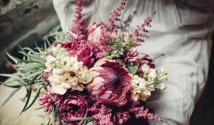 Alexandra Abuza Floral & Garden