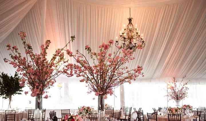 Petals Floral and Party Design, INC