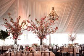 Petals Floral and Party Design, INC