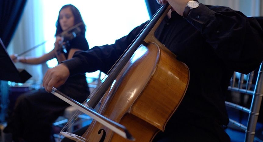 Sophistique strings