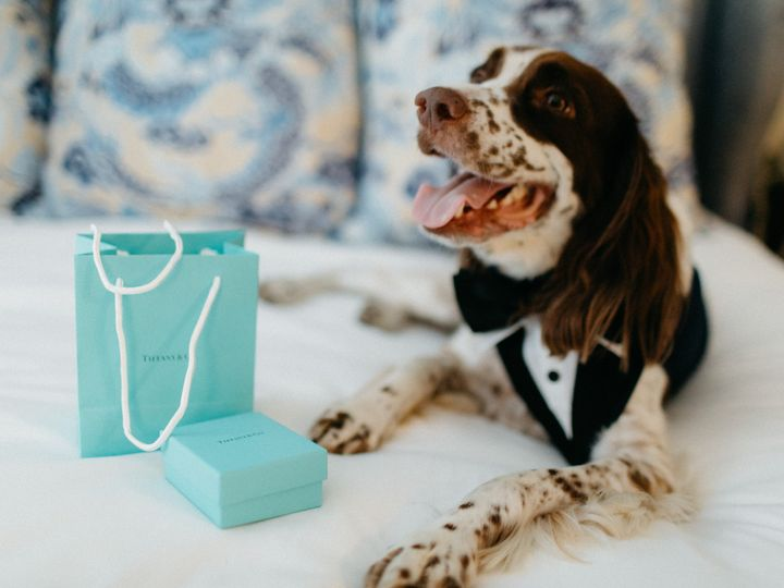 Tmx Ryanalex Married 114 51 1050549 Brooklyn, NY wedding planner
