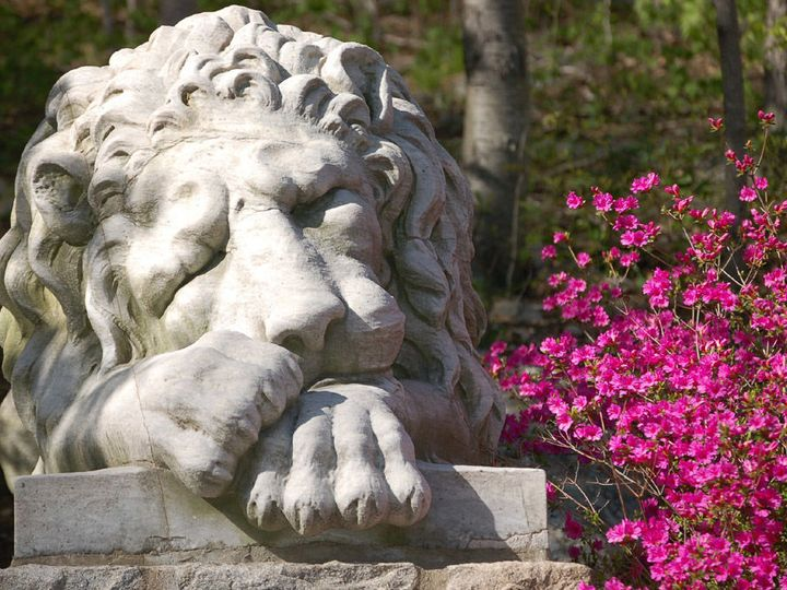 Tmx 1535126995 4755e58d5df18543 1535126994 07d6da3fe24c2159 1535126992810 14 Lion Statue Stamford wedding venue