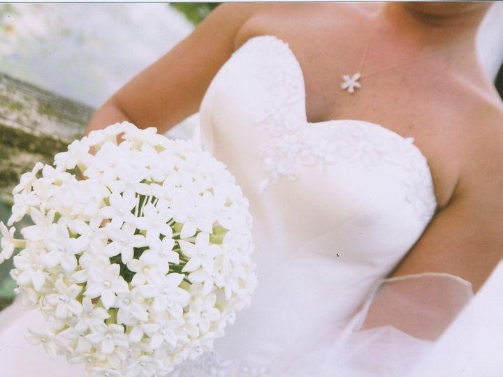Tmx 1357250326463 Ps20101009130245 Tampa wedding florist