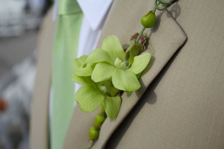 Tmx 1357250704294 Tn2 Tampa wedding florist