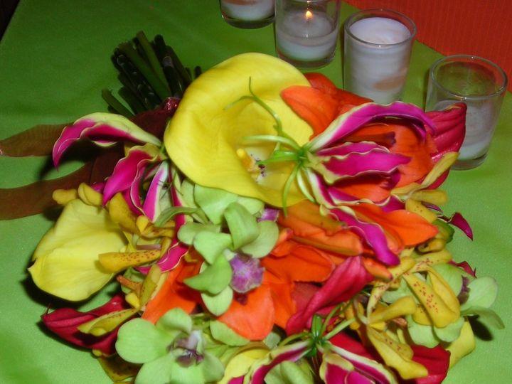 Tmx 1357251205317 DSCN0478 Tampa wedding florist