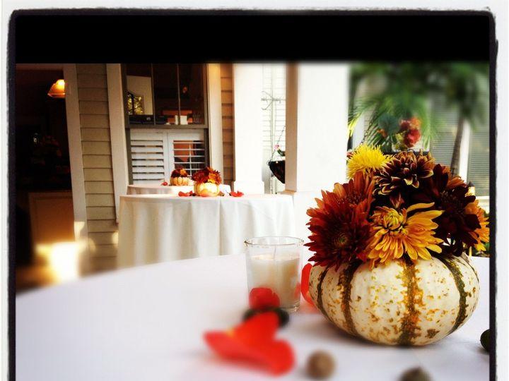 Tmx 1357251384613 IMG5351 Tampa wedding florist