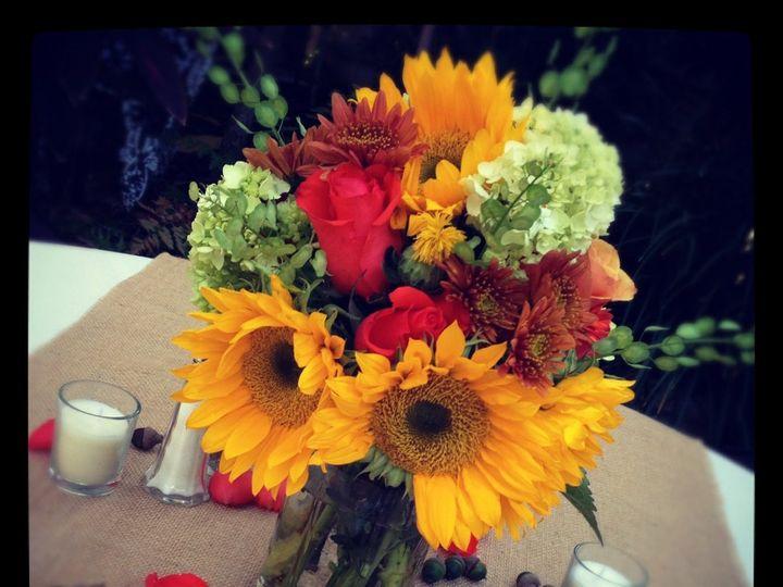 Tmx 1357251428383 IMG5355 Tampa wedding florist