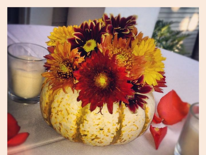 Tmx 1357251436685 IMG5356 Tampa wedding florist