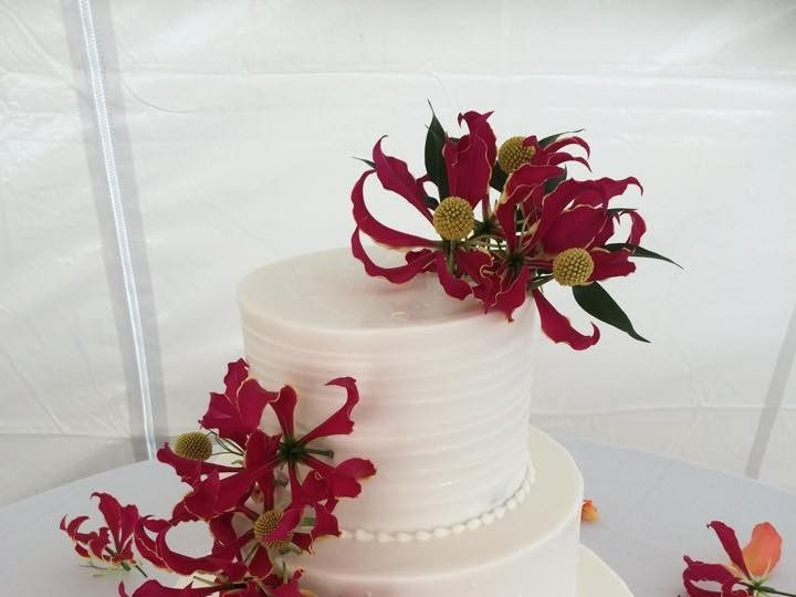 Tmx 1431378536112 106700428479226952827001830729345424581236n Wesley Chapel, FL wedding florist