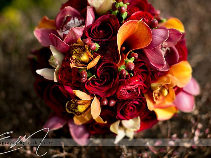 Tmx 1452286757063 20131130 0074 024 Philadelphia, PA wedding florist