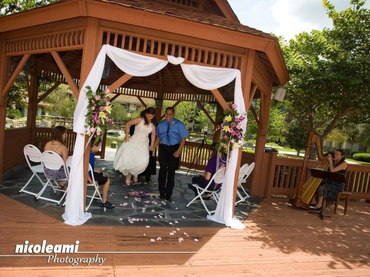 Tmx 1354931686532 2011JulyNIcoleAmiphotography Orlando, Florida wedding ceremonymusic