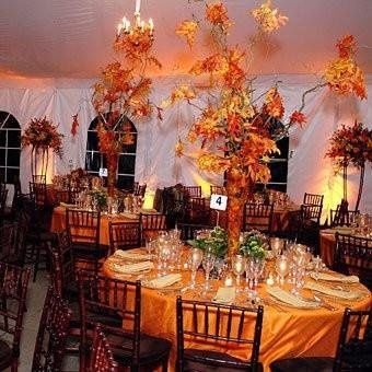 Tmx 1231448072796 Fall Centerpieces Wedding%5B1%5D Brooklyn wedding planner