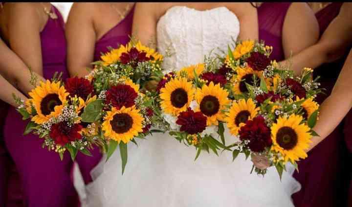 Hollon Flowers