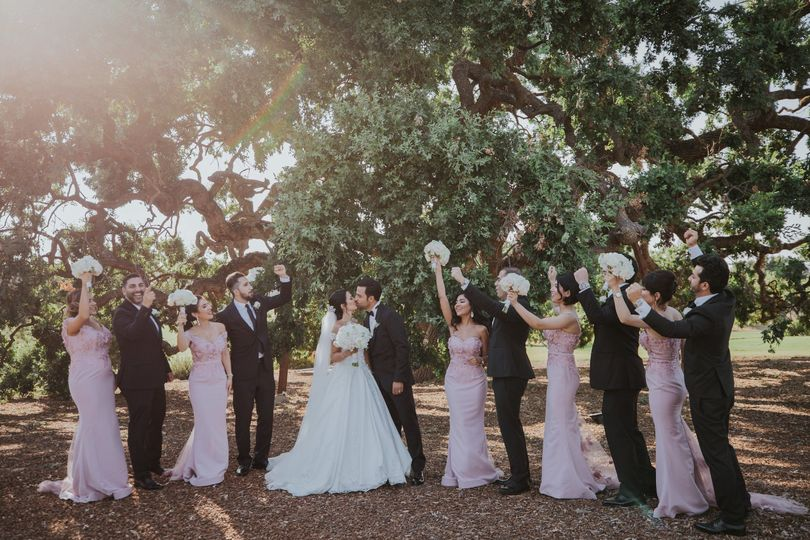 Group photo with groomsmen and bridesmaids