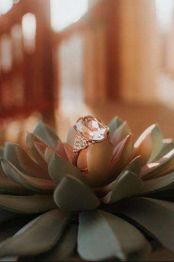 I love ring shots.