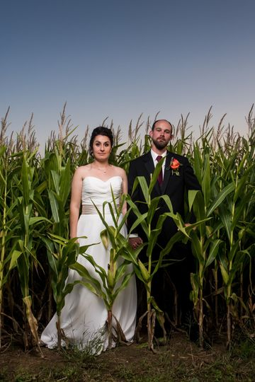 Bride and groom in corn field