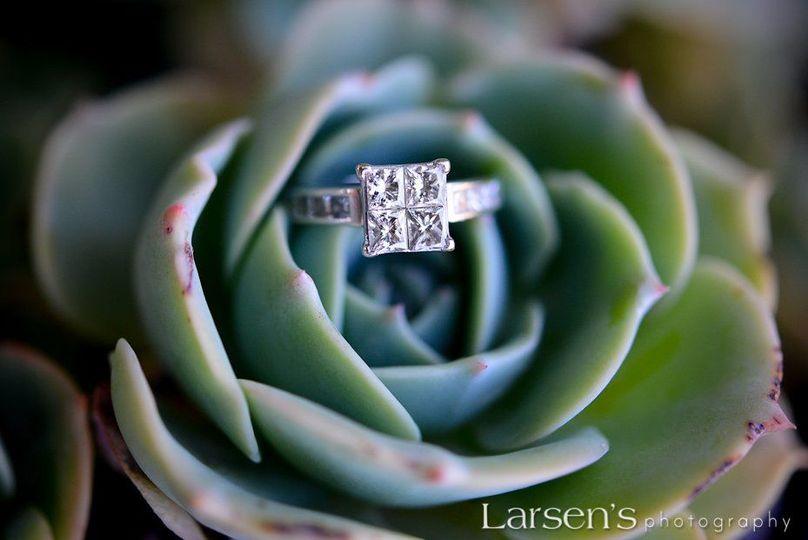 Larsen's Photography