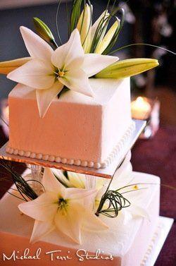 Tmx 1296088268275 SponCake Kalamazoo wedding travel