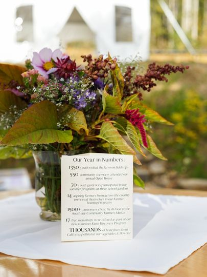 Calypso Floral Arrangement