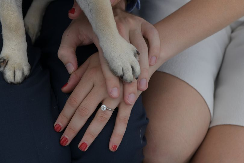 Bride, groom, and dog