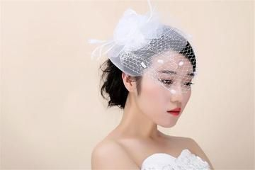 feather and tulle birdcage veil 51 1004849