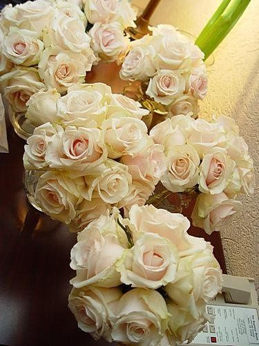 Tmx 1206123600843 DSC02708%5B1%5D Duncanville wedding florist