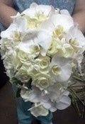 Tmx 1428003972719 2012 03 16good Manning wedding florist
