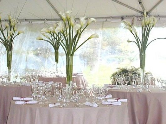 Tmx 1428004169647 Callalily Manning wedding florist