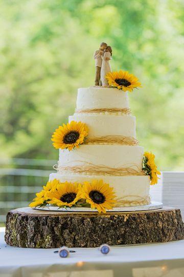 Rustic wedding cake Roanoke VA