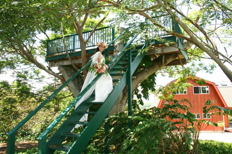 Bride at Tree house