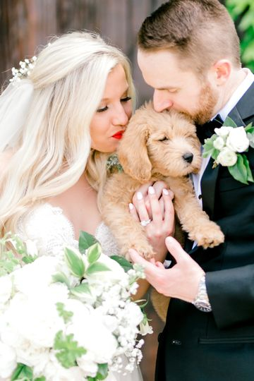 michelle and michael wedding preview by emily nicole photo 51 51 981059 157593227937855