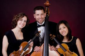 Virtuosi Strings