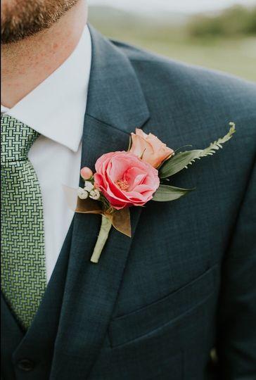 Pink little rose
