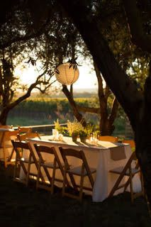 Medlock ames table overlooking vineyard