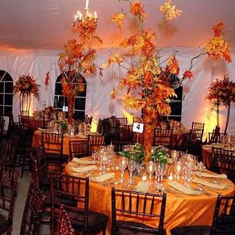 Tmx 1403673065674 Fall Wedding Centerpieces Image San Francisco, California wedding eventproduction