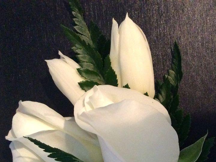Tmx 1442761911448 Img0313 Kingston, Massachusetts wedding florist