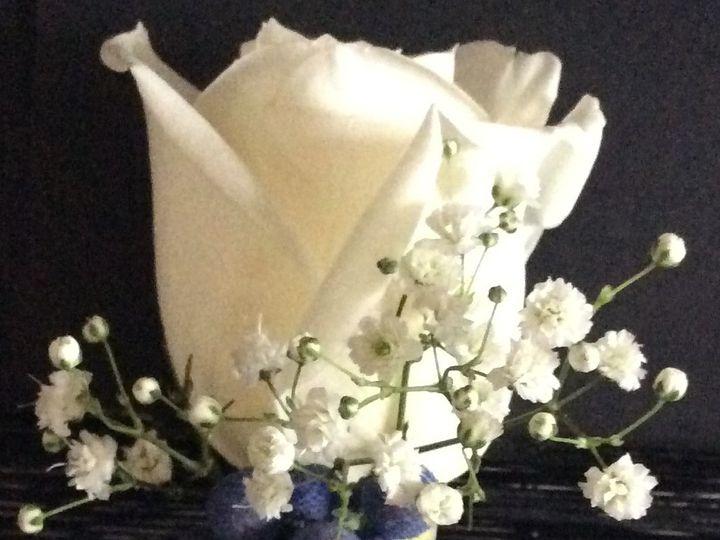 Tmx 1442761937458 Img0340 Kingston, Massachusetts wedding florist